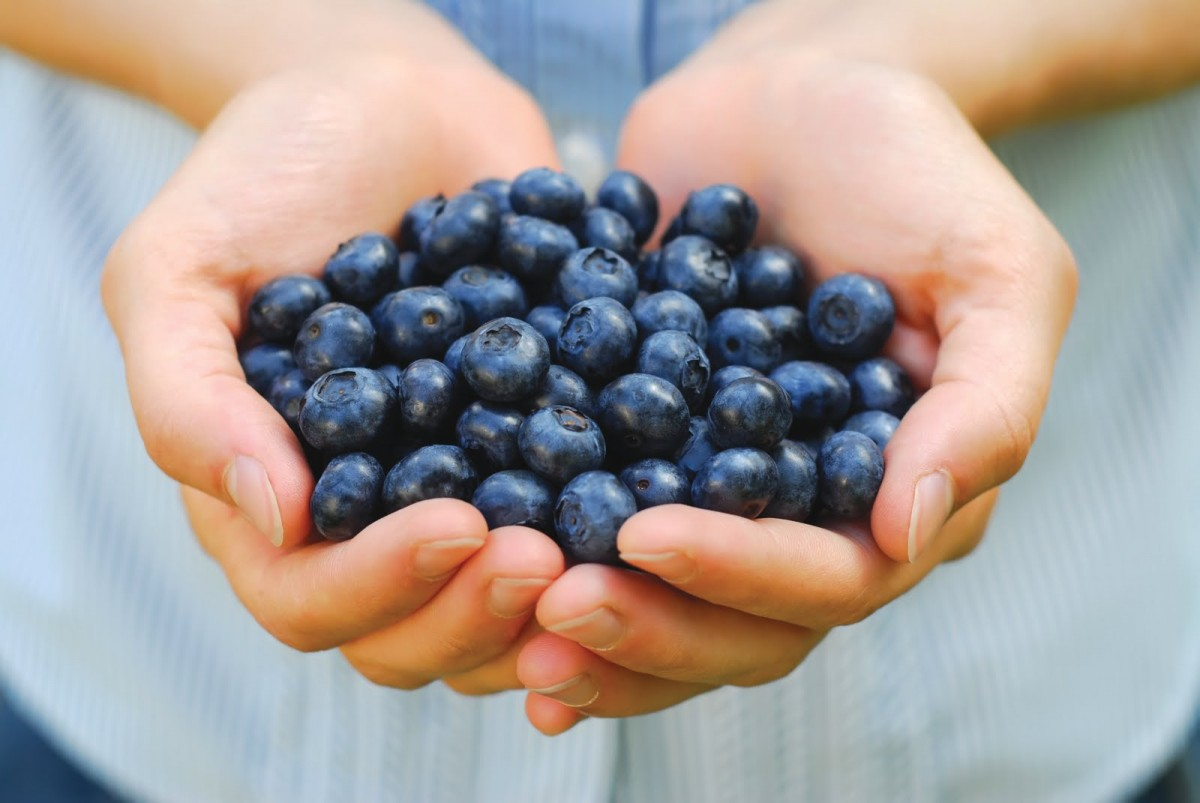 blueberries-in-