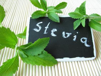 Stevia, Süßkraut mit Namenstafel