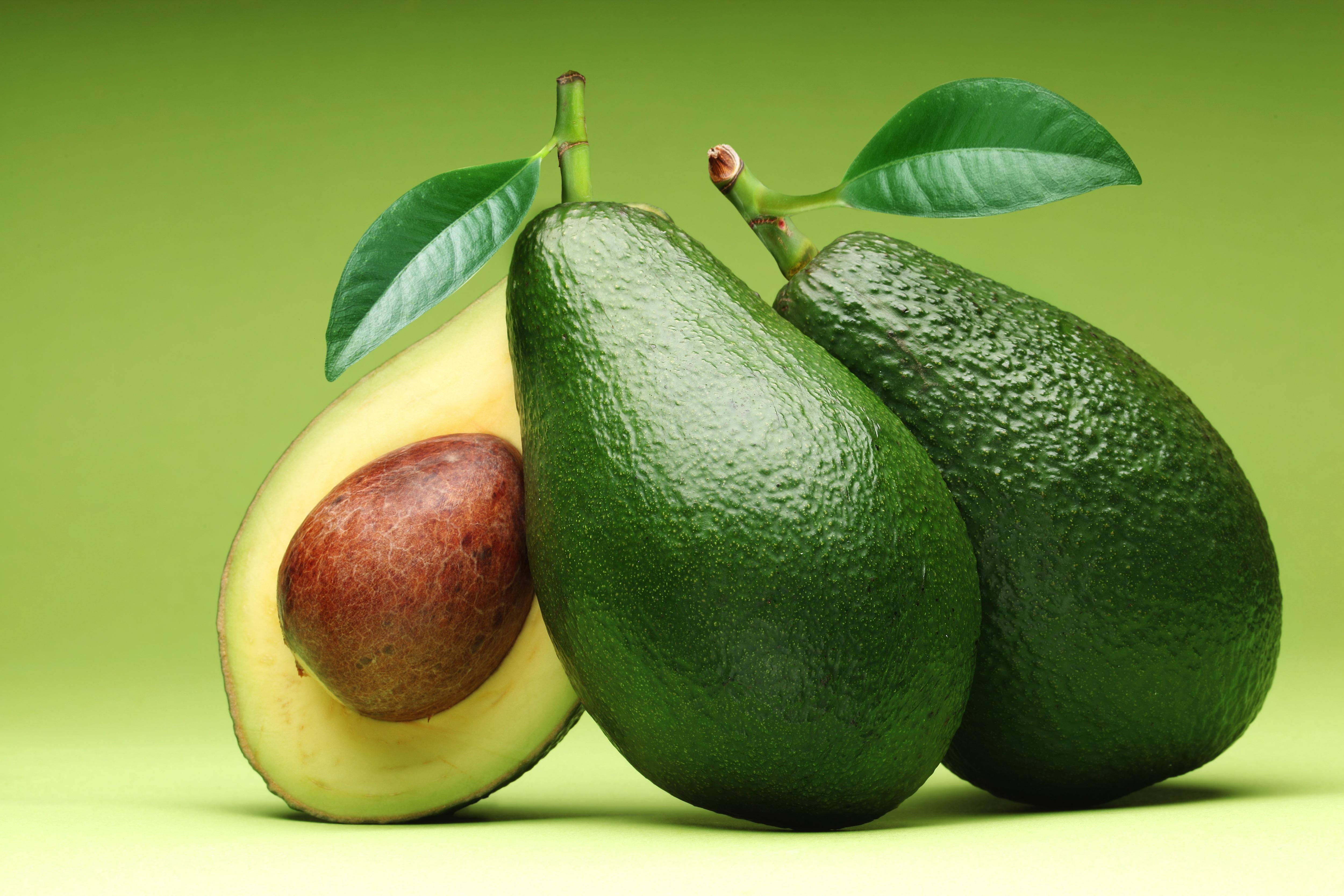 Avocado-1-1