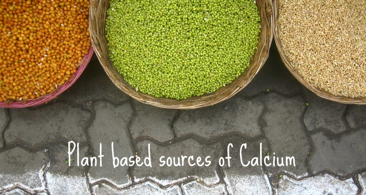 plant-sources-calcium-750x400