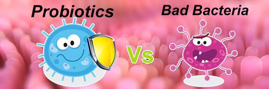 probiotics_vs_bad_bacteria_1024x1024
