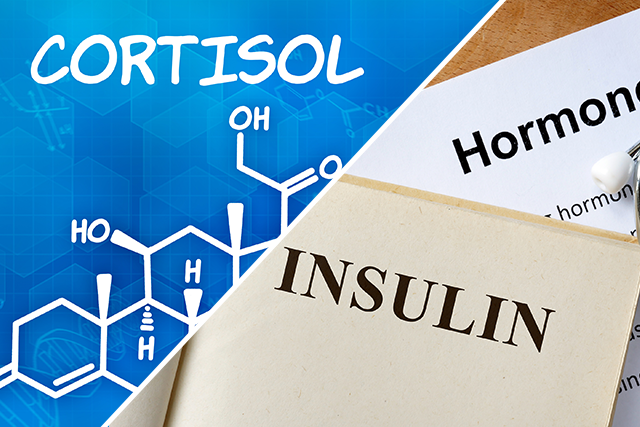 cortisol-insulin-featured-image