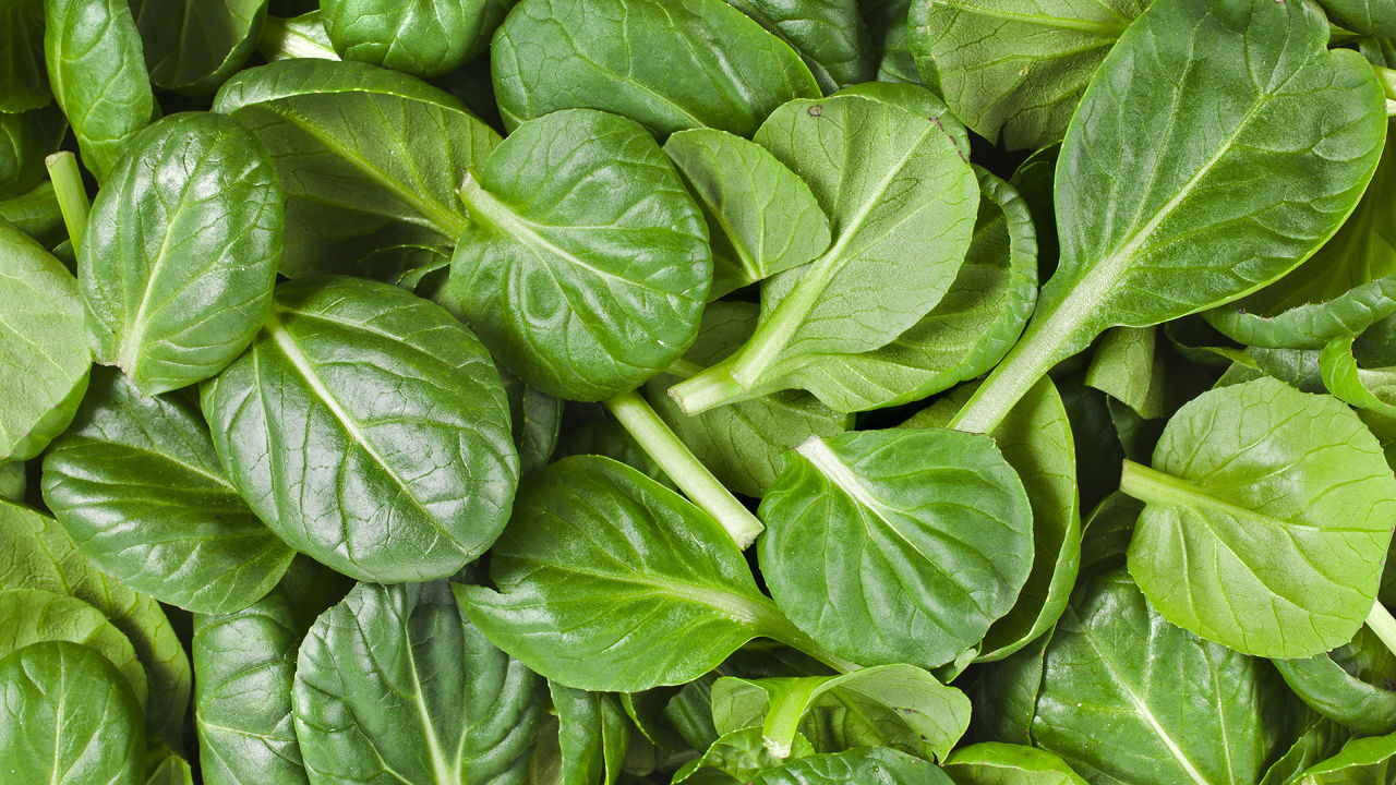 3027928-poster-p-spinach
