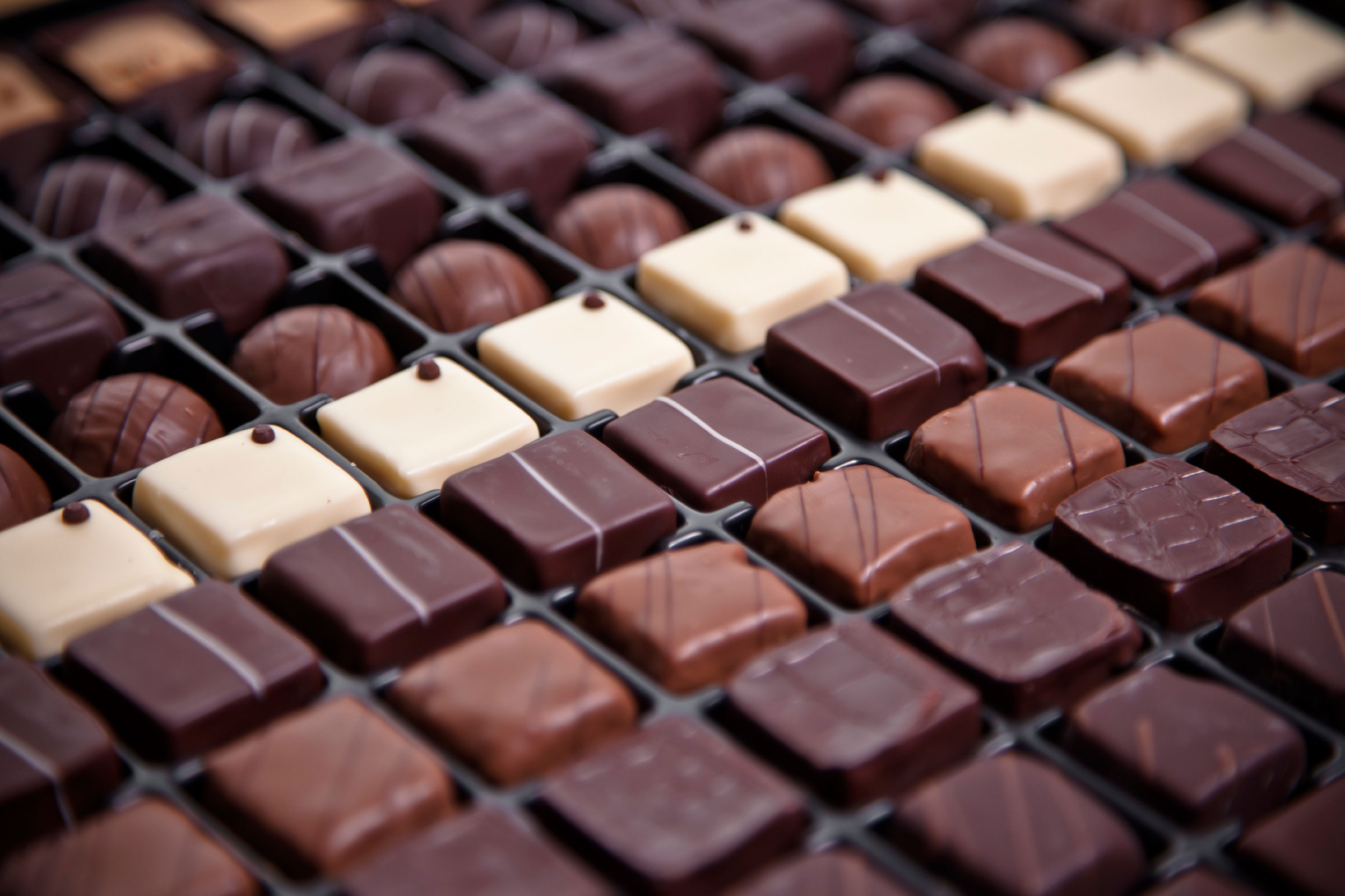 02-secrets-of-professional-chocolate-tasters-lots-of-chocolate