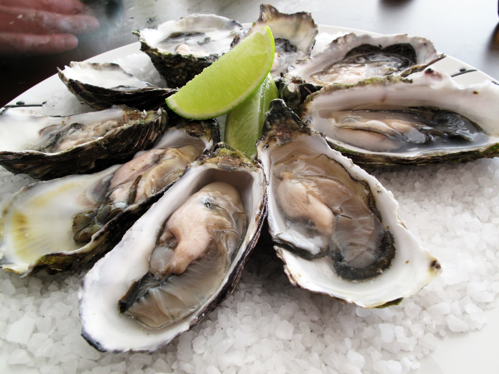 oysters-are-actually-alive-when-you-eat-them